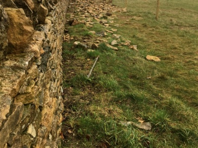 Cotswold Stone Dry Stone Wall, Oxfordshire